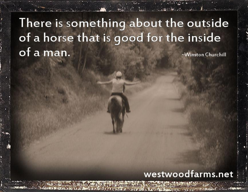 There is something about the outside of a horse that is good for the inside of a man